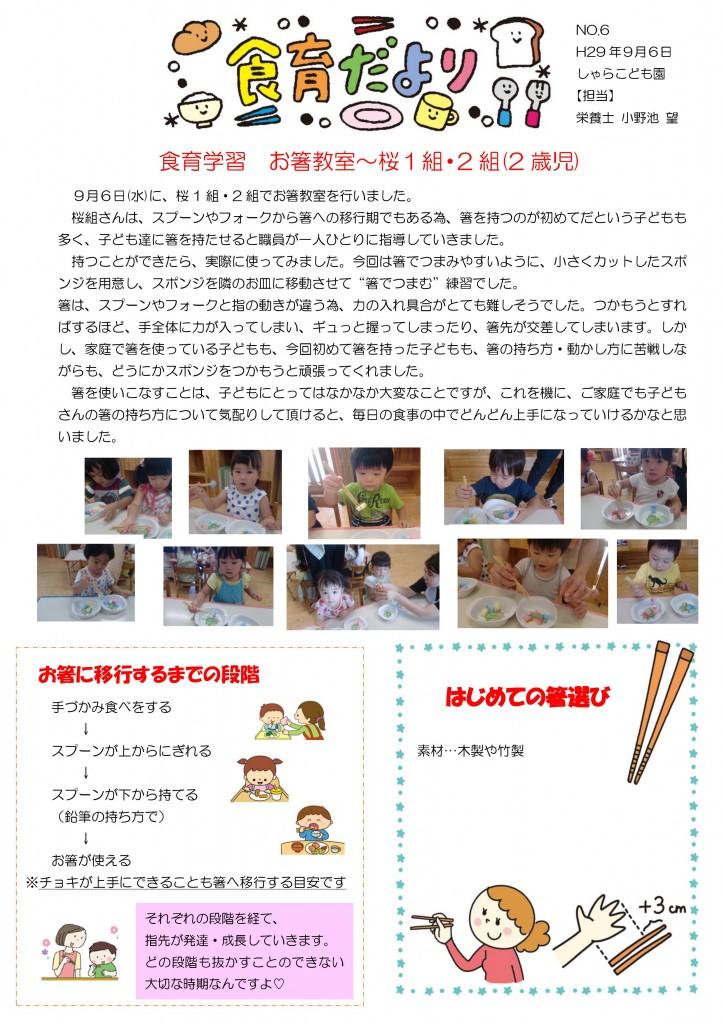 箸教室 平成29年9月8日
